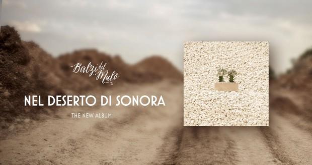 Nel_deserto_di_Sonora (02)